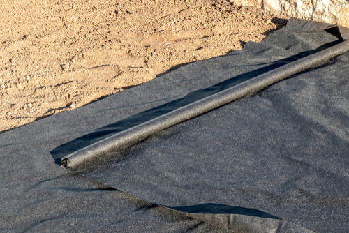 lay membrane on bare soil