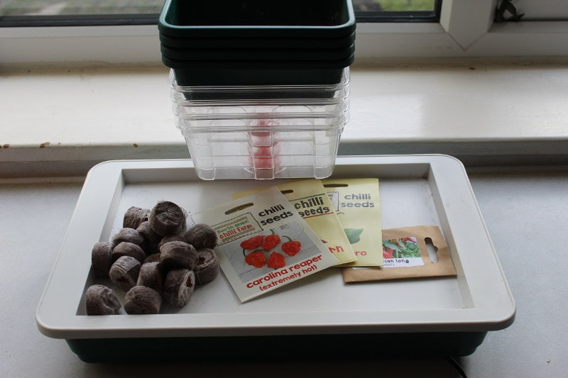 chilli growing equipment needed